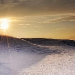 Sneeuwduin
