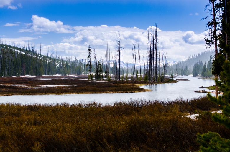 wonderen der Natuur... Yellowstone USA - DSC_0679-3.jpg