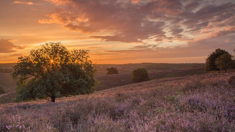 De zon komt op - Zondag al om 5 uur opgestaan. Hoewel er geen mistbankjes waren, liet de zon zich wel zijn. Daarna werd het al snel helemaal grijs bov