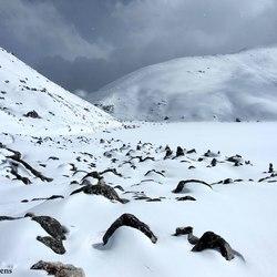De Winter van de Nepal