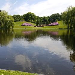Park met vijver