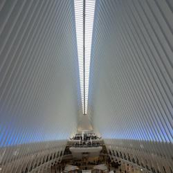 New York Trade plafond
