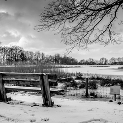 Bank in sneeuwlandschap
