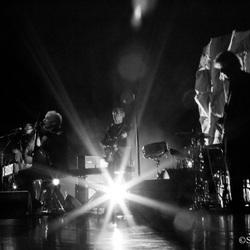 Concert Spinvis Breda