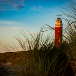 Texel at sunset