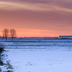 Winter - zonsopkomst