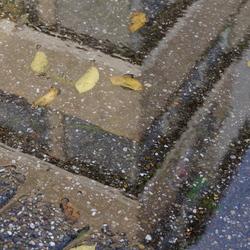 Spiegel in de herfst