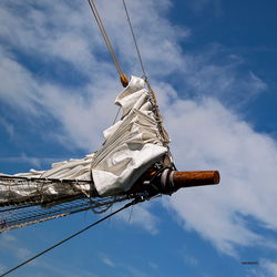 Sail 2010 (2)