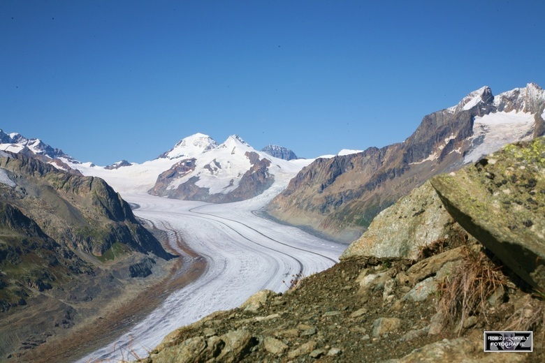 Aletschgletsjer - Imposante gletsjer in Zwitserland