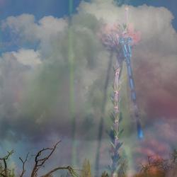 Wolken juffer