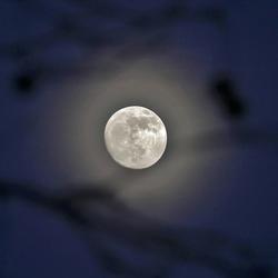 Maan in vrieskoude