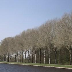 Kanaal Beerzerveld