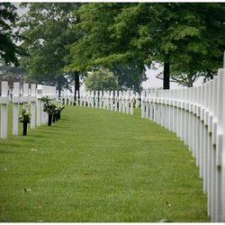 Field of honour...