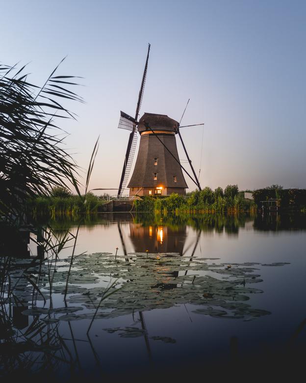 Blue hour in Kinderdijk -