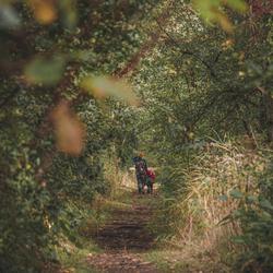 Een wandeling door natuurreservaat Lovenhoek