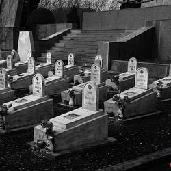 oorlogsbegraafplaats 1603087337Rmn1zw