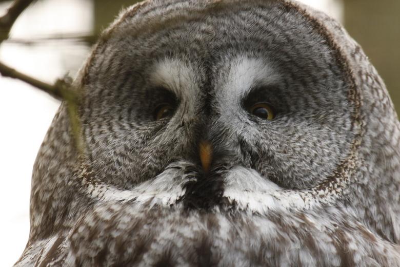 uil - gaiapark 30 december 2012