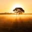 Een prachtige zonsopkomst in het Wierdense veld