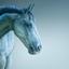 Horse 014