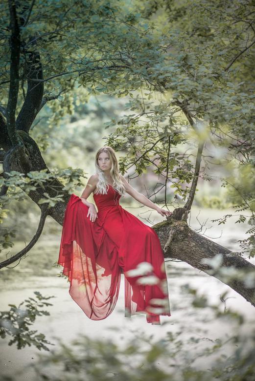Tree princess - Schitterende boom boven het water gezien en model gevraagd om erin te klimmen met jurk en al.