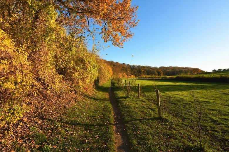 Colours of Autumn - in het Gerendal, Zuid-Limburg...gisteren!<br /> <br /> Bedankt voor alle fijne reacties en waarderingen op mijn vorige opname &q