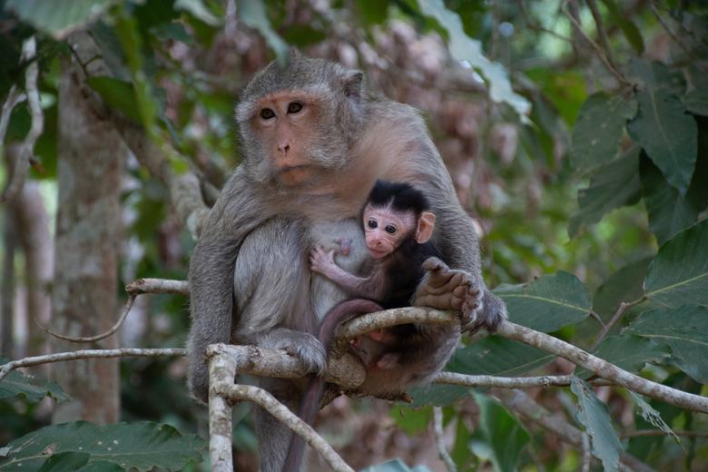 moeder en dochter -