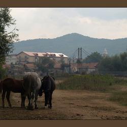 Floresti, Roemenie