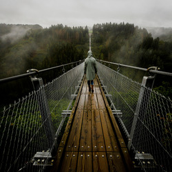Geierlay Bridge