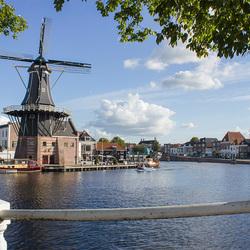 Haarlem - Adriaan de Molen