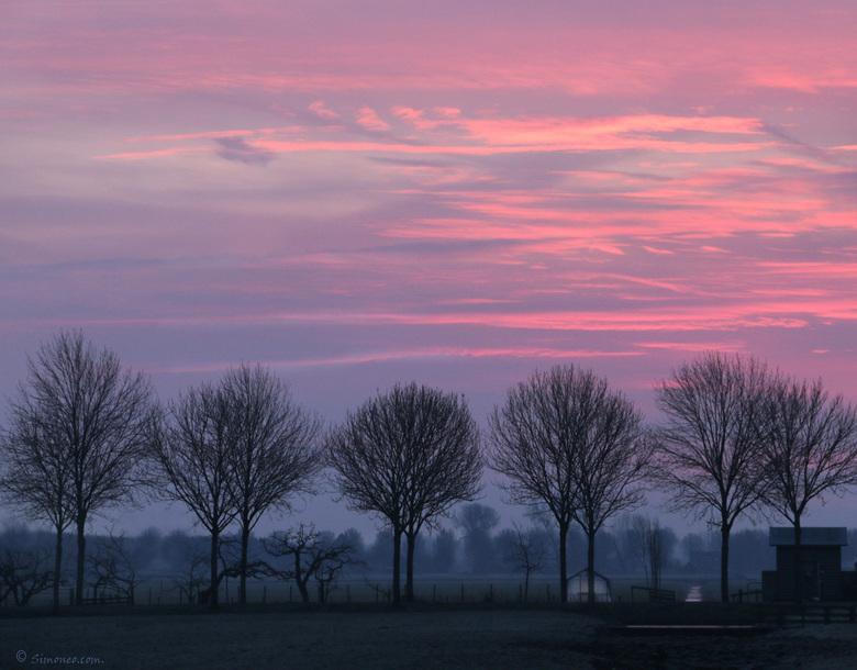 ochtendgloren in pastel - Vanochtend even naar mijn favoriete doorkijkje dichtbij huis gefietst en ik werd beloond. Niet lang daarna veranderde de luc