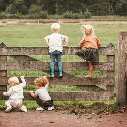4 kleine kleutertjes die zaten op een hek...