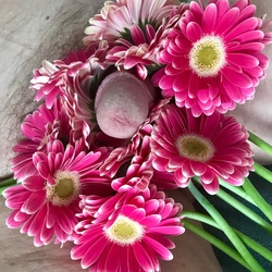 piemeltje even mooi dan de bloemen
