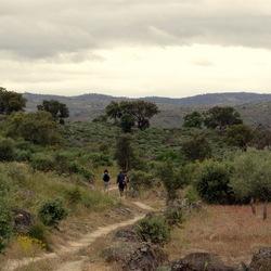 Lopen in het Faia Brava natuureservaat