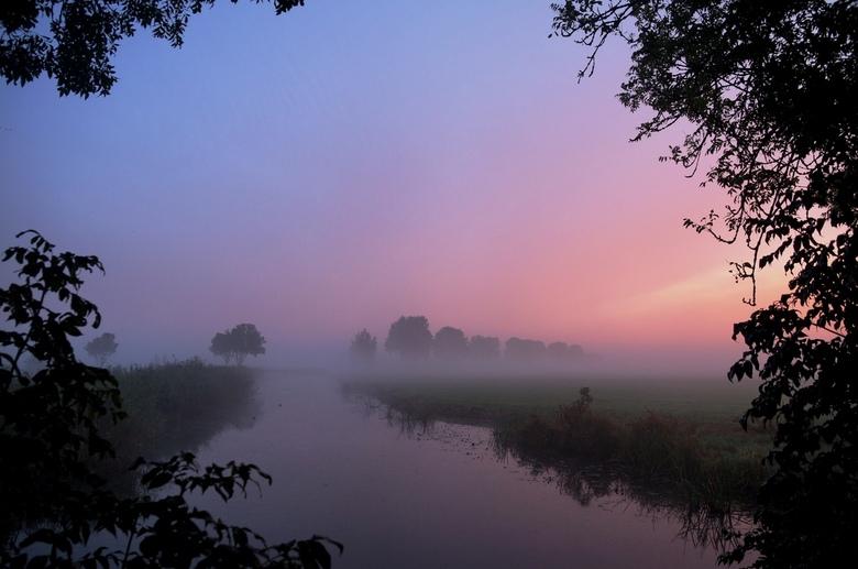 vroege morgen - mist in de polder
