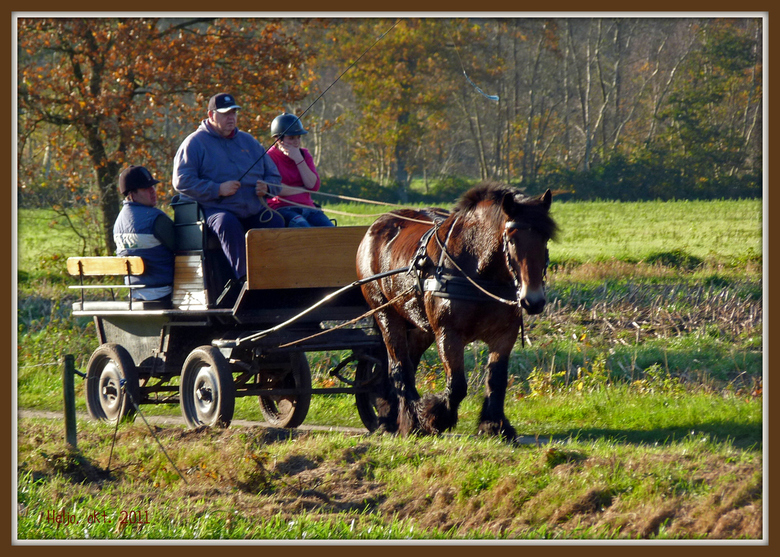 Een karretje op de zandweg reed.... - Herfstplaatje vanuit het Zijerveld