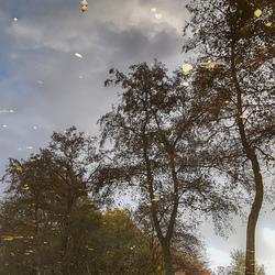 Herfstspiegel