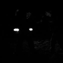 midnightfight