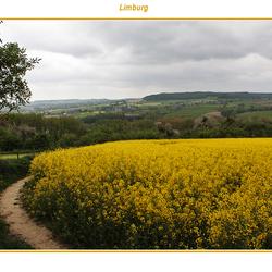 Limburg 4