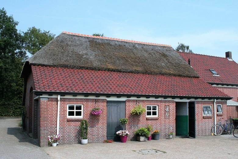 IMG_3527 Achterzijde boerderij in Hoeven - Boerderij in Hoeven. Achterzijde met prachtige raampjes en deuren. Fleurige planten. Mooi plaatje. Lief.