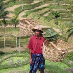 Werken in Indonesie
