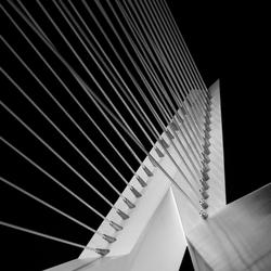Bridge in b&w