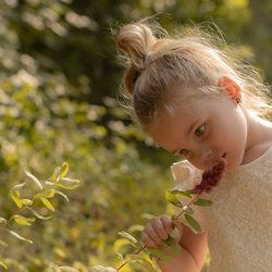 De vieze bloem