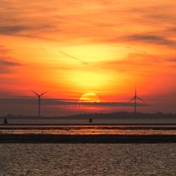 Sunset in between...