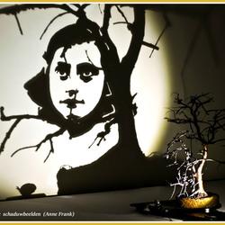 Magische schaduwbeelden (2)  (Anne Frank)_DSC1518