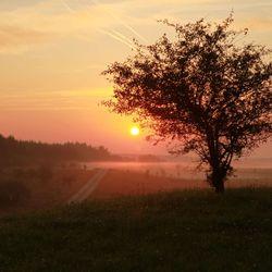 Sunrise@Grafenwoehr Training Area