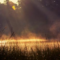 Warme zonsopkomt Beegderheide