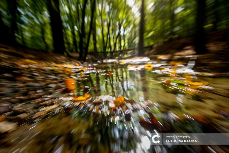 Focus op de herfst - Het effect van een lange sluitertijd icm een flinke swing aan mijn tele objectief. herfst langs de Leuvenumse beek in al zijn dyn