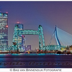 Citylife Rotterdam - Bridges In Colours