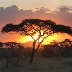 Tanzania18