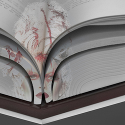 Open boek .....